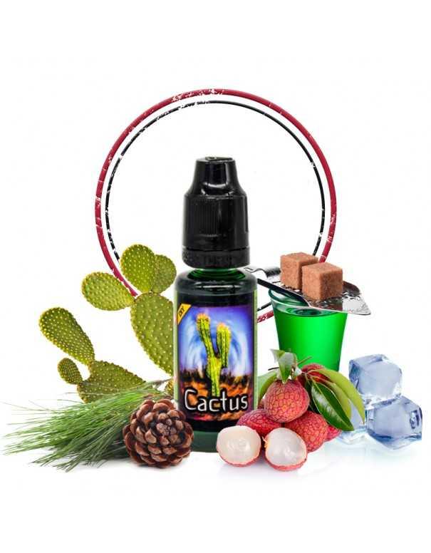 Image principale du DIY Cactus en 20ml
