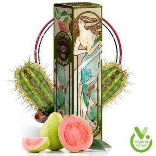 Image principale du Cactus Goyave en 50ml